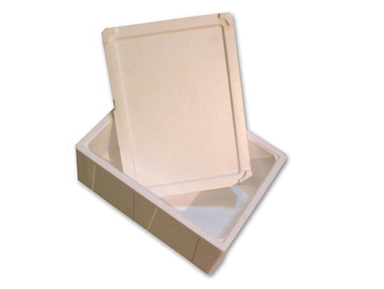 Cajas de poliestireno expandido con tapa